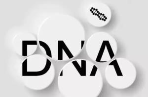 香港DNA